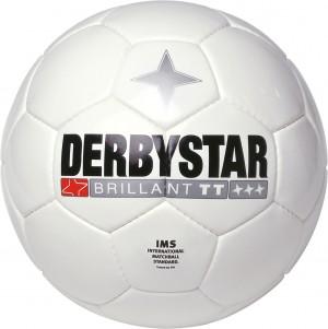 20x Derbystar Fußball Brillant TT